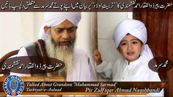 Molana Peer Zulfiqar Ahmed Naqshbandi D B | IQRA Website